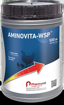 AMINOVITA-WSP